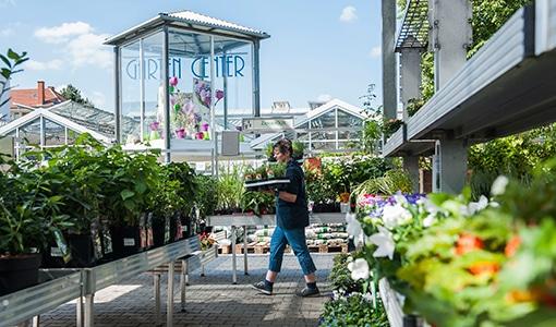 Symbolbild Kategorie Gartencenter